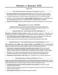 Resume Writer for CFO Executives   CFO Resume An Expert Resume