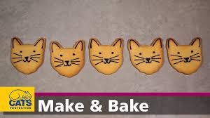 <b>Cat</b> face <b>biscuits</b> – <b>Kitty</b> Bakes episode two - YouTube