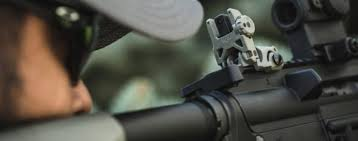 Best Backup Iron Sights (BUIS) [2019] - Pew Pew <b>Tactical</b>