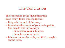 structure of essay essay structure