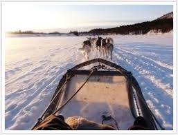Image result for Oulu Finland landscapes