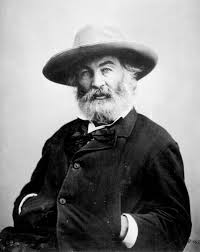 great american author series a political companion to walt walt whitman by mathew brady