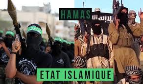 """Résultat de recherche d'images pour """"Daesh sinai"""""""