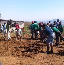 "25 Mejor ""Escuela"" cerca de Hammersdale, Kwazulu-Natal, South ..."