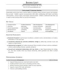 computer skills on resume examples resume formt cover letter listing computer skills on resume examples of job skills for
