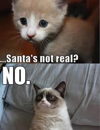 SANTA? NO! | Grumpy Cat | Know Your Meme via Relatably.com