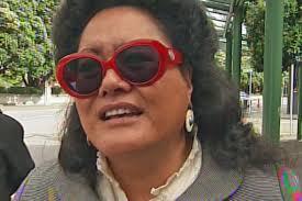 Maori Council lawyer Donna Hall - donna-hall-1200