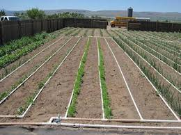 Small Picture Garden Irrigation Design Markcastroco