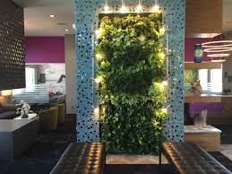city plantscaping denver office plants interior plant service wall grey living room the living amazing office plants