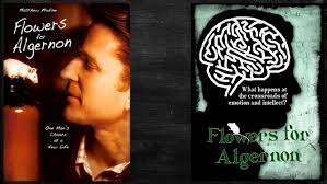 flowers for algernon journal project the best flowers ideas flowers for algernon essay questions instead of taking a big unit test on flowers for algernon you
