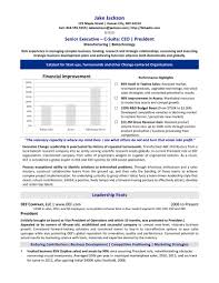 executive resume service professional resume writing chief executive officer resume sample