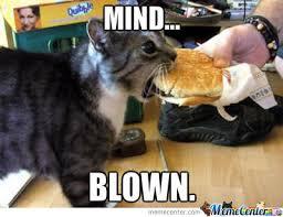 Cat Has Cheeseburger by 8-bitkittycat - Meme Center via Relatably.com