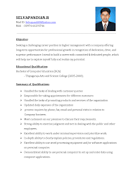 Resume Examples  Example Of Resume For Sales Executive With Objective Statement And Educational Qualification In Rufoot Resumes  Esay  and Templates