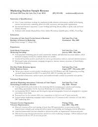 student resume summary examples cipanewsletter cover letter resume for students examples objective for resume