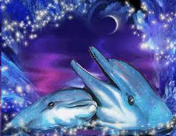"""Résultat de recherche d'images pour """"photo de dauphin trop mignon"""""""