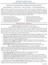 Pinterest     The world     s catalog of ideas Sales Executive Resume are really amazing instances of resume and Cover Letter for the people who are scanning for course to fulfilling the enrollment in a