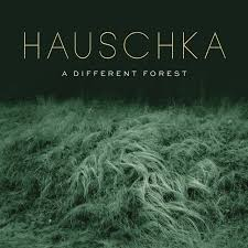 <b>Hauschka: A Different</b> Forest | CD Album | Free shipping over £20 ...