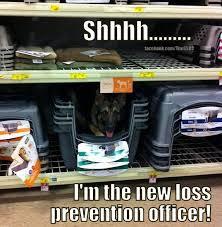 lp life on Pinterest   Retail Meme, Retail and Reality Check via Relatably.com
