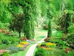 Image result for عکس های زیبا از طبیعت