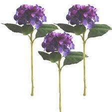 <b>Hydrangea</b> Bushes Flowers for sale | eBay