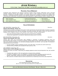 director of s software resume it director sample resume it resume writer technical resume it director sample resume it resume writer technical resume