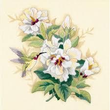 <b>Hibiscus Floral</b>