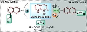 The direct C–H alkenylation of quinoline N-oxides as a <b>suitable</b> ...