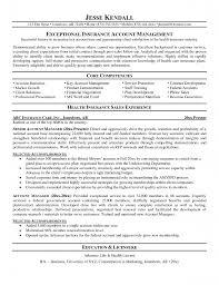 customer service operations manager resume customer service manager resume examples service manager resume professional resume samples by julie walraven cmrw sample