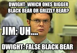 Dwight Schrute memes | quickmeme via Relatably.com