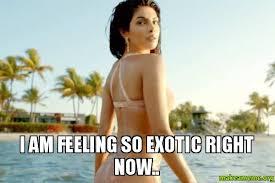 i am feeling so exotic right now.. - | Make a Meme via Relatably.com