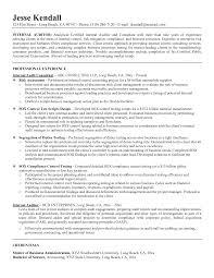 internal resume template getessay biz internal auditor resume example by mplett for internal resume
