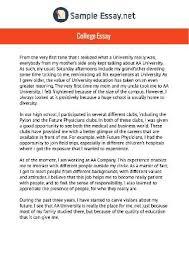 sample essays on indulgy comhttp     sampleessay net outstanding college essay