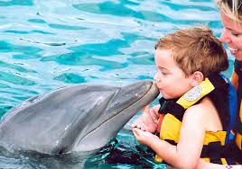 Dolphin_Encounter_at_the_Miami_Seaquarium