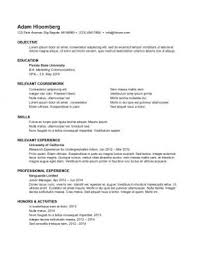 Rock your Internship Resume: 998 Samples + 15 Templates Internship Resume Sample 9