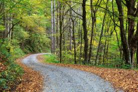 Image result for image of a gravel road