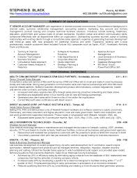 sales executive resume format  seangarrette co s executive