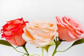 Шикарные гигантские розы из гофрированной бумаги - мастер ...