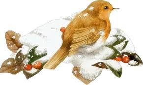 """Résultat de recherche d'images pour """"gifs gratuits coucou bisous oiseaux hiver"""""""