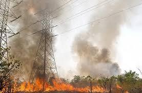 Resultado de imagem para perigos das queimadas