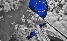 Risultati immagini per bandiera europa?