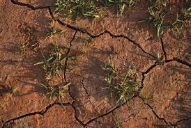 major causes of land degradation in essay world losing farm soil daily to salt induced degradation unu inweh