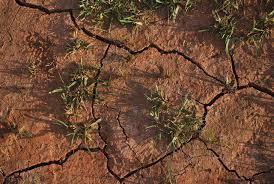 major causes of land degradation in essay world losing farm soil daily to salt induced degradation unu inweh