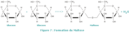 add new comment   azaquar comformation du maltose