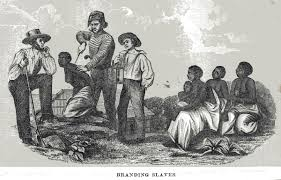 Image result for photos slaves in the south