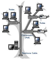computer networks topology   types of networking topologies    tree topology network diagram