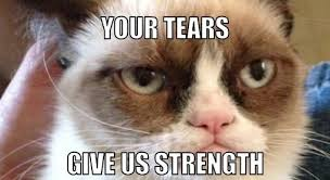 Top 25 Grumpy Cat Memes - CatTime via Relatably.com