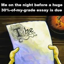 write me a essay  papi my ip mecollege essay help reddit