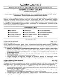 insurance executive resume example sample executive resume format