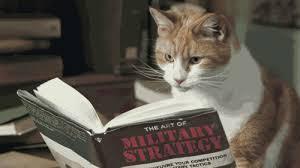 Hasil carian imej untuk kucing dan buku