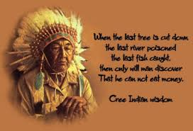 Quotes About Native Americans European. QuotesGram via Relatably.com